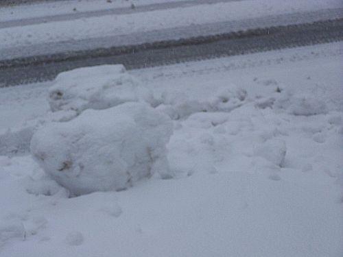 Snowdump