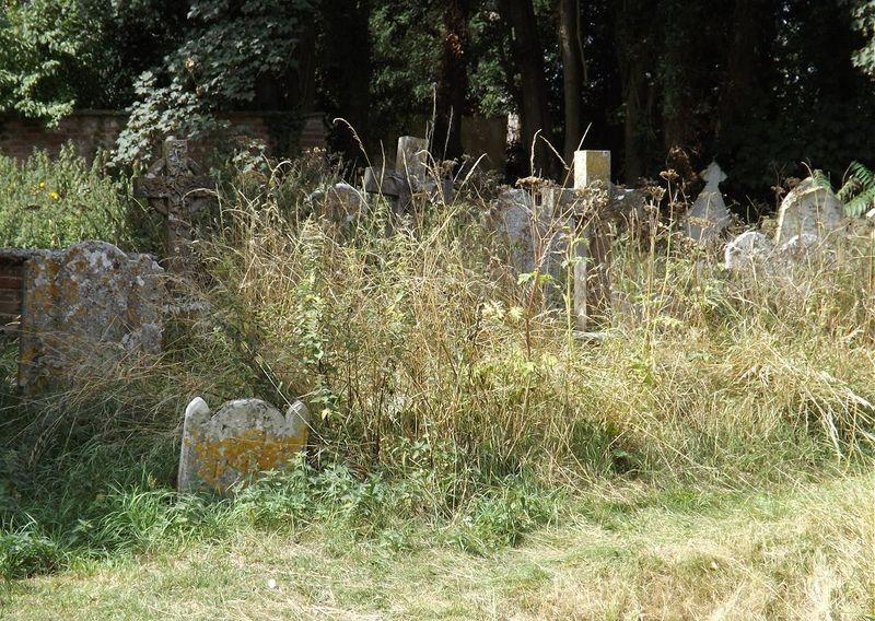 Gravesunkempt