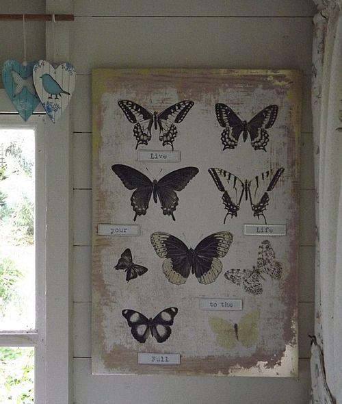 Burtterflies