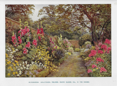 My garden 1sml