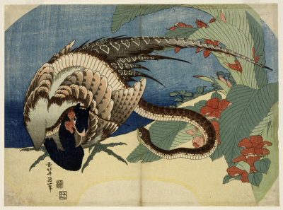 Hokusai c1830 Snake Pheasant and Canna