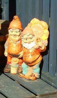 Gnomes_1